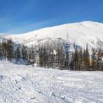 Panorama of beautiful winter landscape — Stock Photo