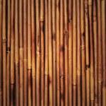 bambus tekstura — Zdjęcie stockowe