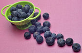 Fresh Modern Blueberries — Stock Photo