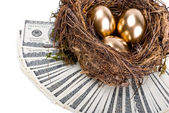 Three golden eggs in the nest. A symbol of making money and succ — Stock Photo