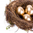 Three golden eggs in the nest isolated on white background — Foto de Stock