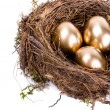 Three golden eggs in the nest isolated on white background — Stock Photo
