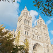 Natural History Museum at London — Stockfoto