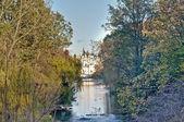 сент-джеймс парк в лондоне, англия — Стоковое фото