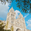 Natural History Museum at London — Foto Stock