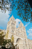 Natural History Museum at London — Stock Photo