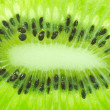 Closeup of kiwi as a background — Stock Photo