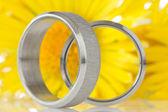 银环与黄色的花朵 — 图库照片