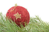 Red christmas bauble and pine branch — Stock Photo