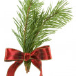 Green pine branch with red bow — Stock Photo