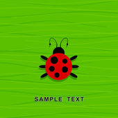 Ladybird on a green background. — Stock Vector