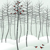 Birds sit on a tree in the winter. — Stock Vector