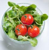 Fresh green salad and tomatoes — Stock Photo