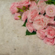 Vintage background with roses — Stock Photo #9644558