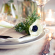 Holiday table setting — Stock Photo #9855071