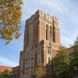 University Of Tennessee Hill — Stock Photo #8073643