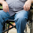 Paraplegic In Wheelchair — Stock Photo #9061109