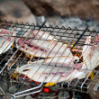 Fish is roasted on fire — Stock Photo