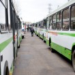 Corridor of buses - Foto de Stock  