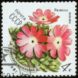 Stock Photo: Stamp, macro