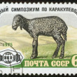 Stamp, macro — Stock Photo