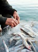 Obras de fisher — Foto de Stock