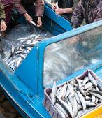 Załoga rybaków przy pracy — Zdjęcie stockowe