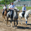 Mounted police - Stock Photo