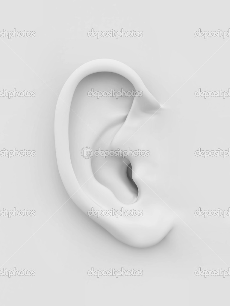 Three-dimensional white soft human ear on white background. 3d  Stock Photo #8517296