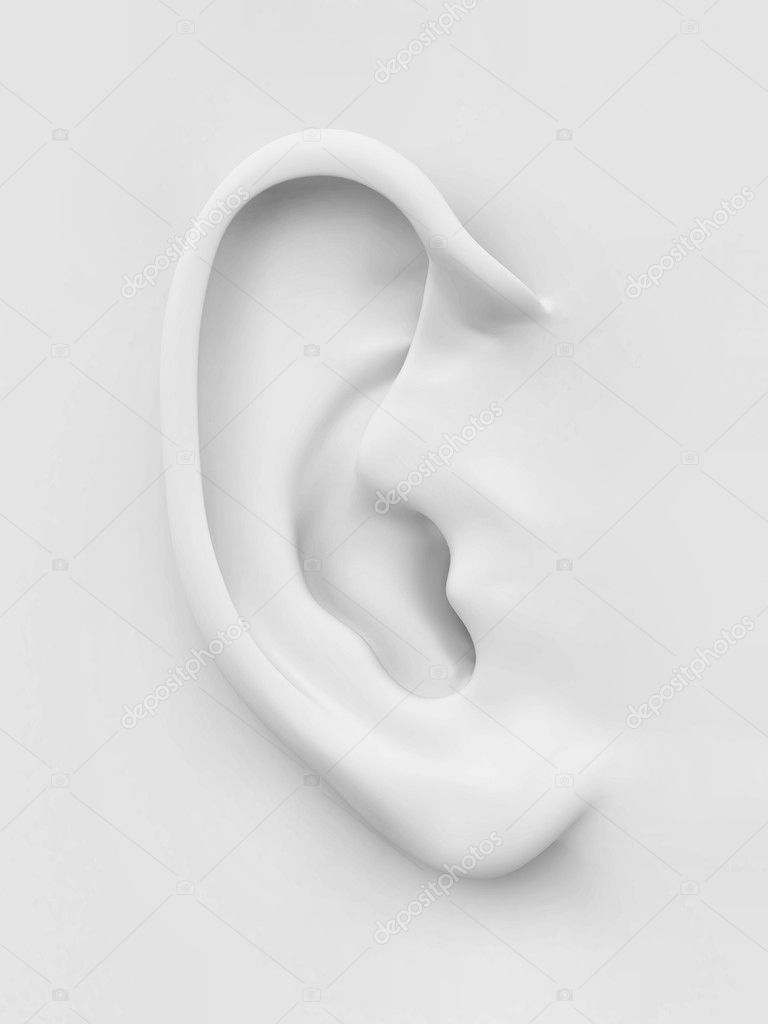 Three-dimensional white soft human ear on white background. 3d  Stock Photo #9082258