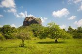 Lion's rock - ancient rock fortress and palace — Stock Photo