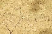 Old cracked dry ground — Stock Photo