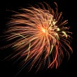 Firework — Stock Photo #9192707