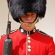 Beefeater in Tower of London - Stock Photo