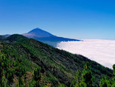 Teide National Park, Tenerife, Canary Islands, Spain — Stock Photo