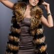 Royalty-Free Stock Photo: Beautiful fashionable woman in fur