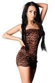 Elegant fashionable woman in tigrine wear — Stock Photo