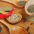 Spices in the spoons — Stok fotoğraf