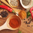 Spices in the spoons — Foto de Stock