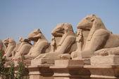 Sculpture from Karnak Temple — Stock Photo