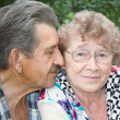 Family portrait of great elderly hugging — Stock Photo