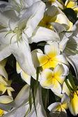 Frangipani and lilies — Stock Photo