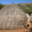 图库照片: Africgrass hut