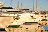 Yachten im hafen während des sonnenuntergangs — Stockfoto
