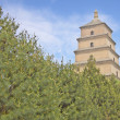 The Big Wild Goose Pagoda, X'ian — Stock Photo