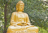 Buddha statue made of gold — Stock Photo