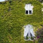 Building in the village of Saint-Paul de Vence — Stock Photo #8681352