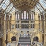Постер, плакат: Natural History Museum London