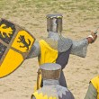 Medieval warriors — Stock Photo
