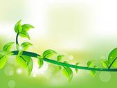 Fresh green leave illustration for vector — Stock Vector